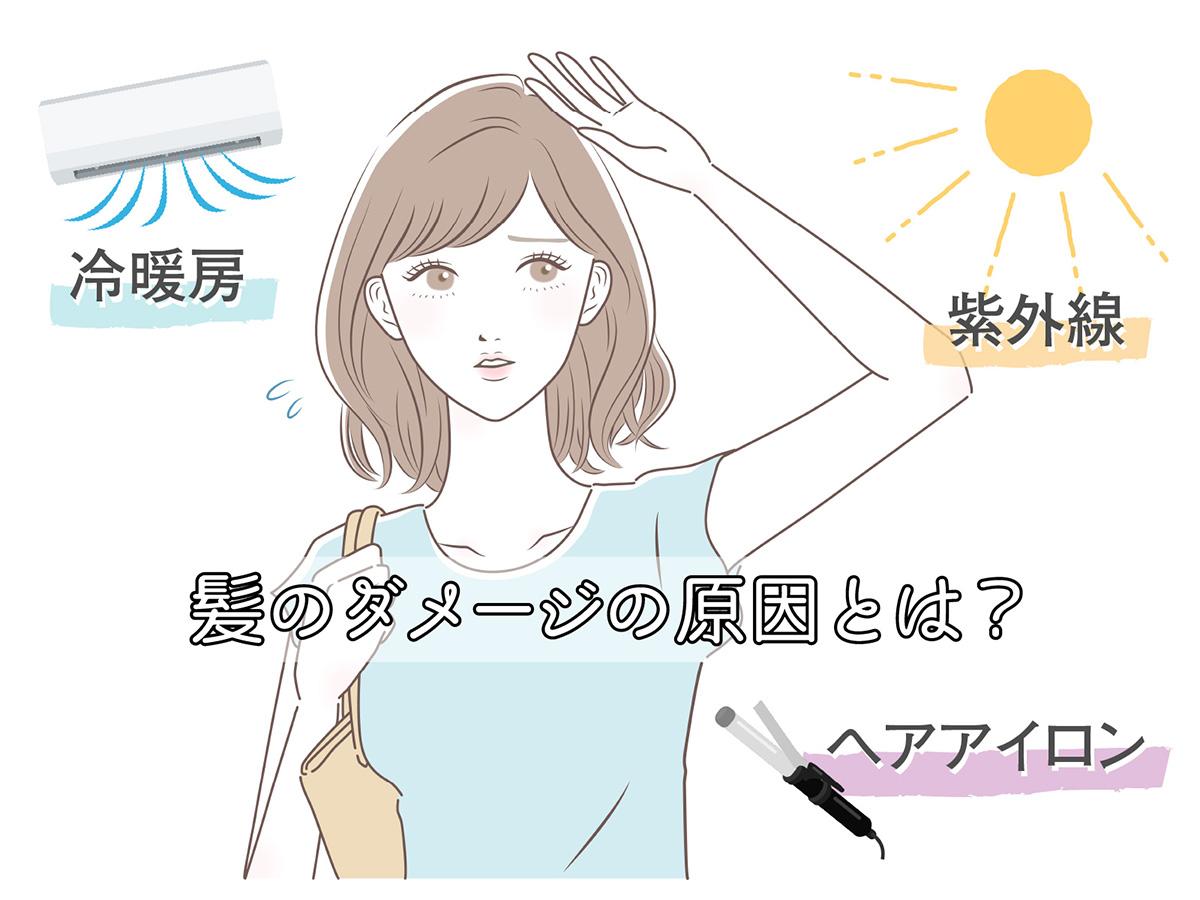 髪のダメージの原因とは?